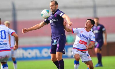 Carlos Bustos reveló cómo se dio el fichaje de Hernán Barcos esta temporada