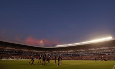 Gallos de Querétaro inauguró zona exclusiva para mascotas en el Estadio Corregidora